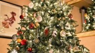 Рождество в CREF